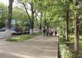 avi-kazakh-07-266